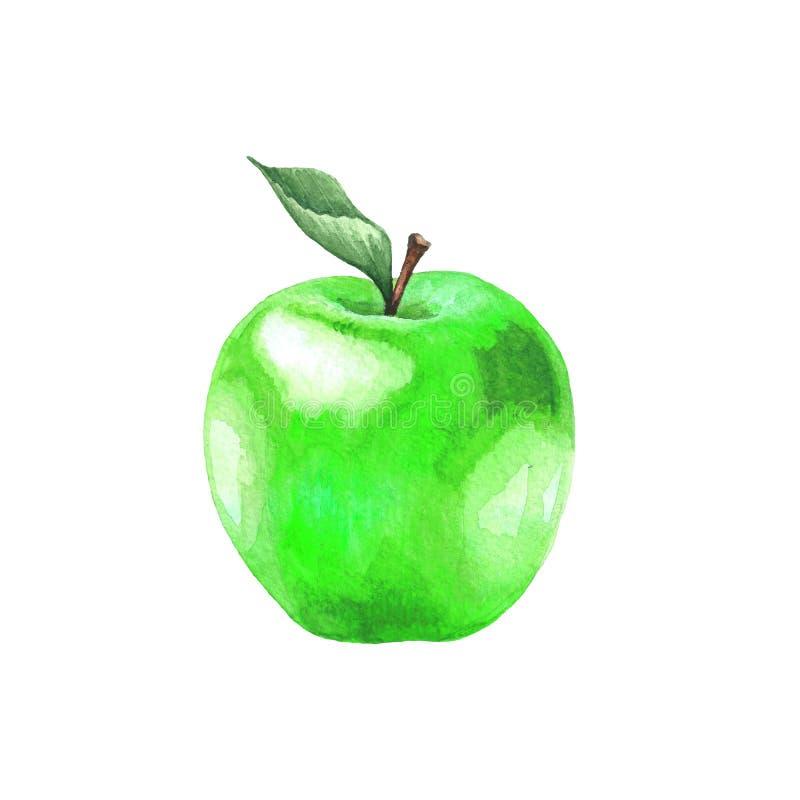 水彩与叶子的绿色苹果 库存图片