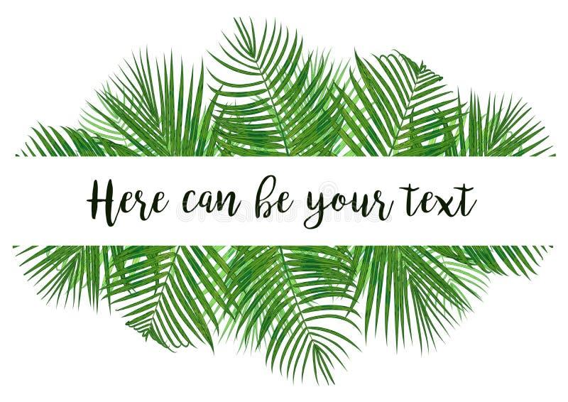 水彩与热带椰子叶子的传染媒介例证 Exo 库存例证