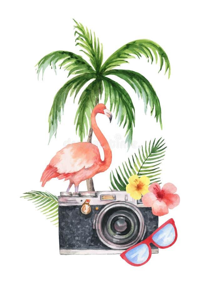 水彩与照相机、棕榈树、花、热带在白色背景隔绝的叶子和桃红色火鸟的传染媒介卡片 库存例证