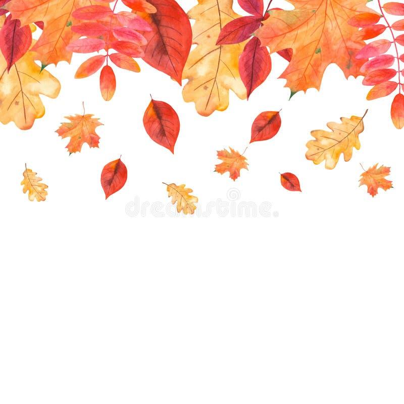 水彩与秋叶,莓果,麦子的插件边框 皇族释放例证