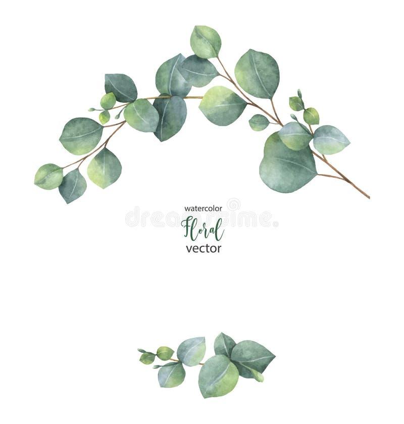 水彩与绿色玉树叶子和分支的传染媒介花圈 库存例证