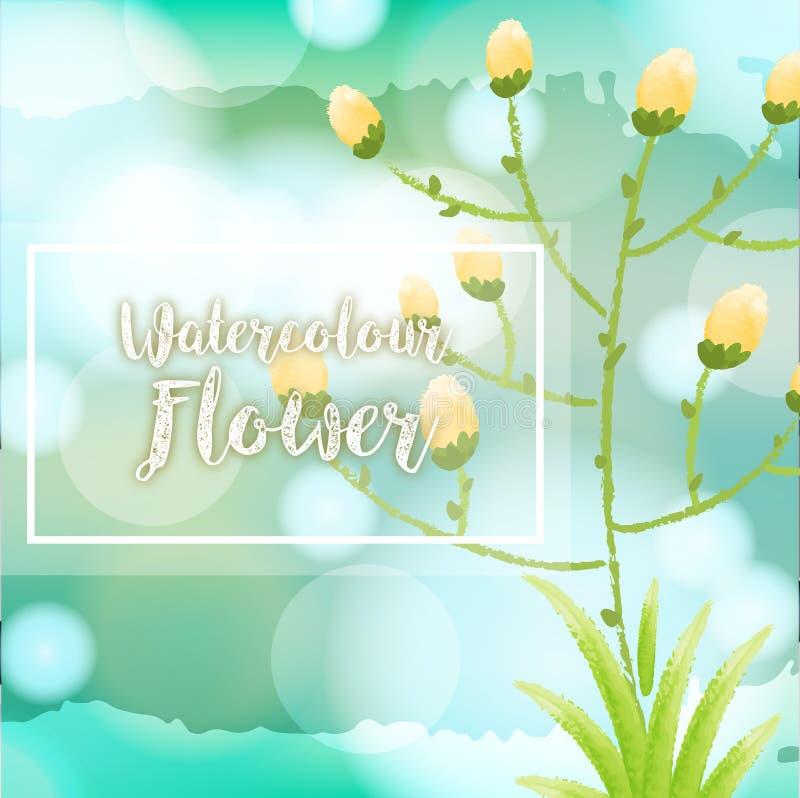水彩与黄色花的花背景 库存例证
