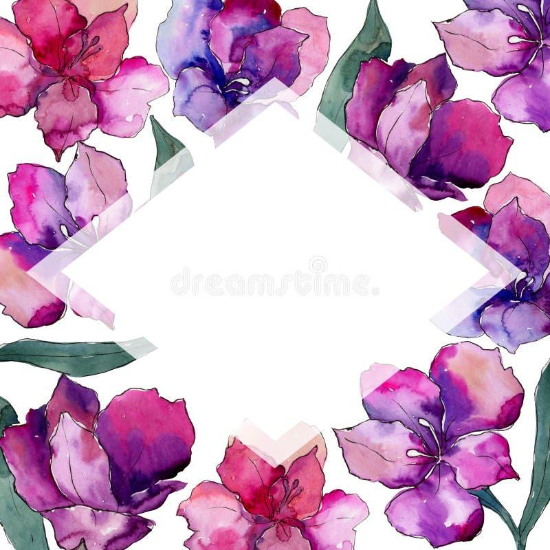 水彩五颜六色的德国锥脚形酒杯花 花卉植物的花 框架边界装饰品正方形 向量例证