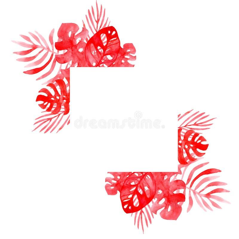 水彩例证从珊瑚颜色热带叶子的框架背景  皇族释放例证