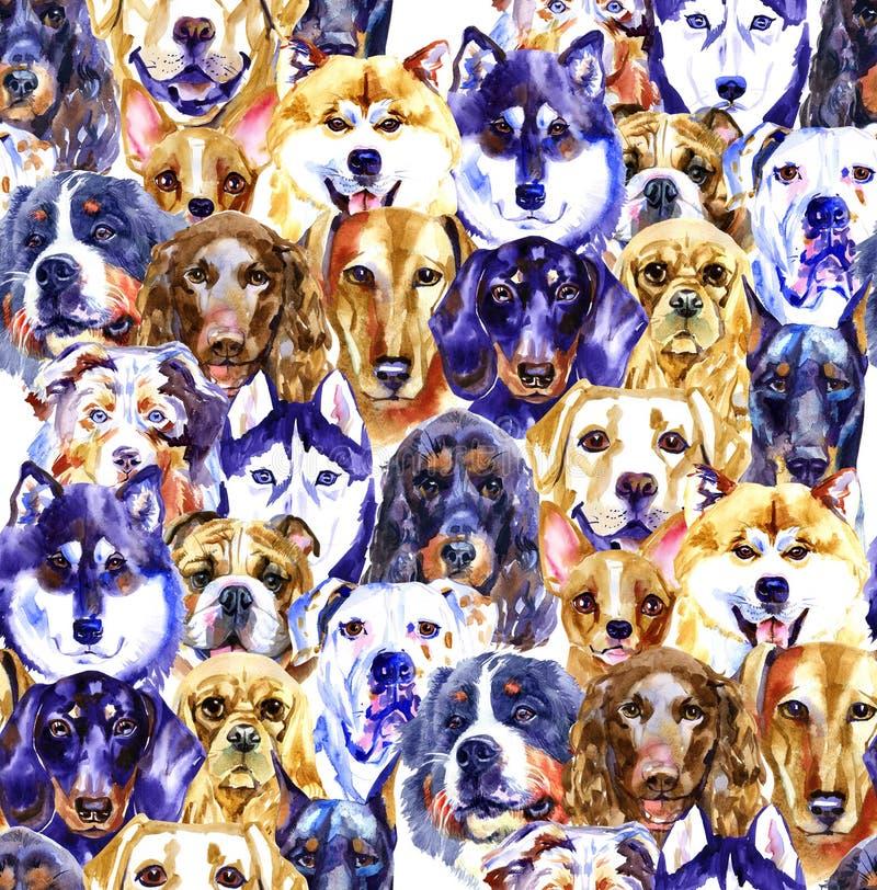 水彩例证套狗,在白色背景隔绝的无缝的样式 皇族释放例证