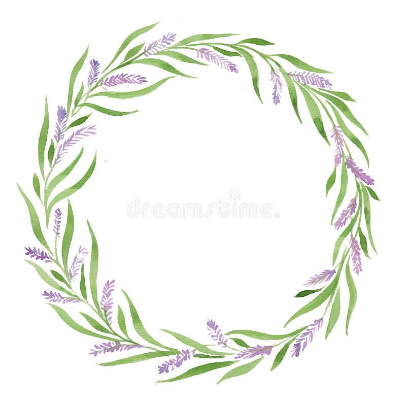 水彩例证花圈淡紫色,叶子绿化紫色花,招标,婚姻的实用主义,普罗旺斯 皇族释放例证