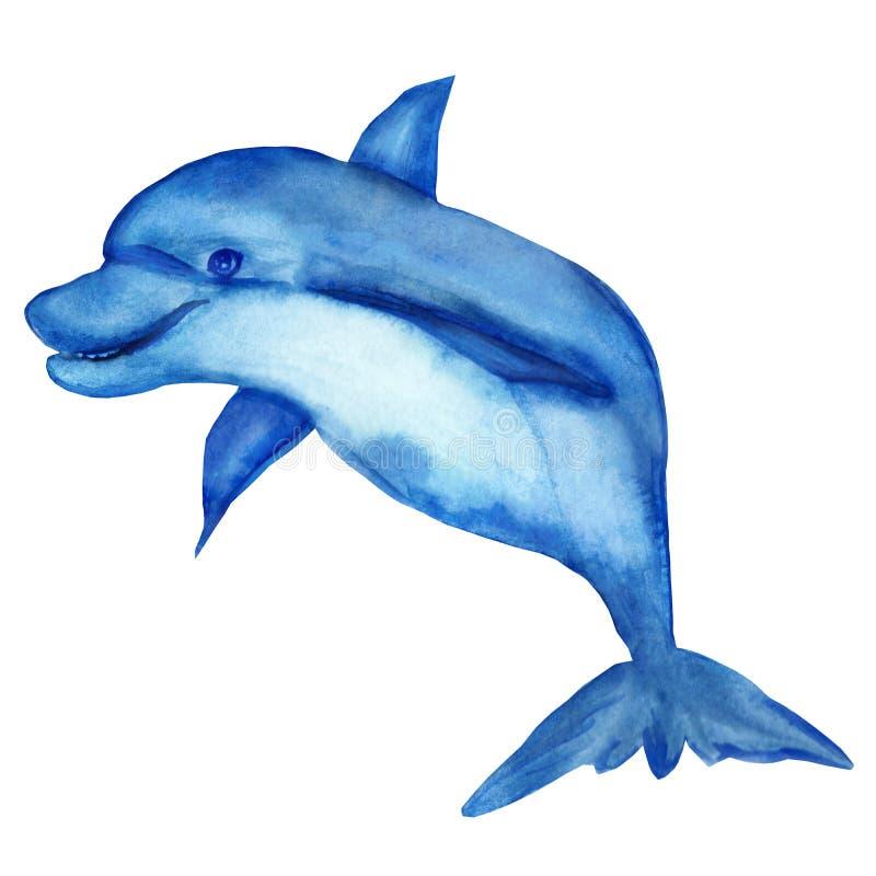 水彩例证,在白色背景隔绝的快乐的海豚 向量例证