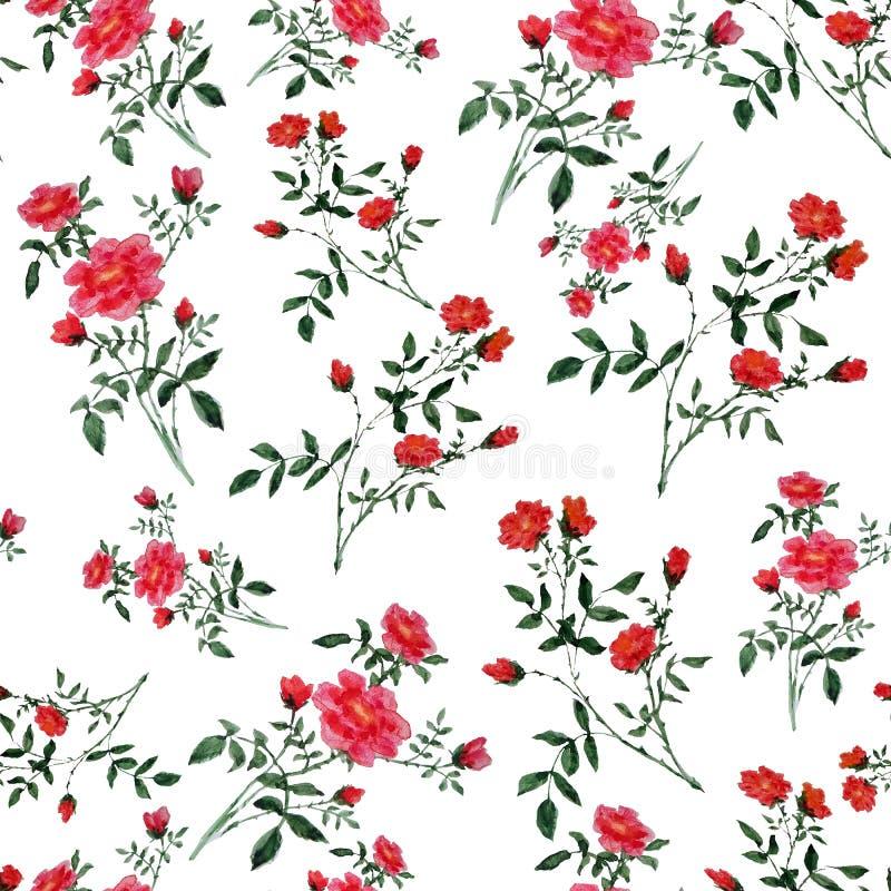 水彩元素的无缝的样式 与绿色叶子和小红色花的小树枝 库存例证