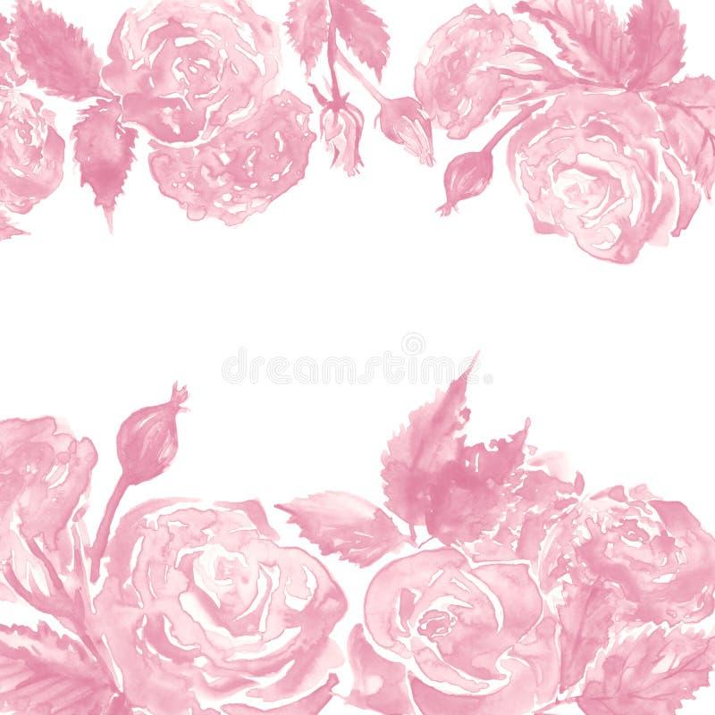 水彩单色桃红色白色玫瑰色牡丹花花卉构成框架边界模板样品背景 向量例证