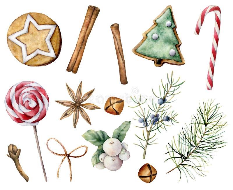 水彩圣诞糕点组 白色上分离的手绘糖果甘蔗、棒棒糖、饼干、桧木和雪莓 免版税库存图片