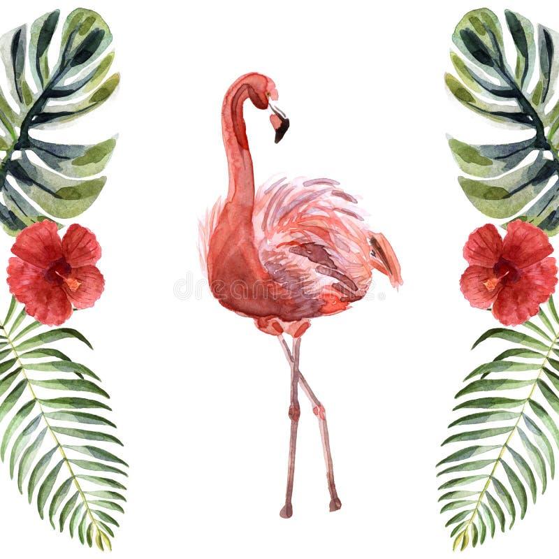 水彩在白色背景隔绝的桃红色火鸟 库存例证