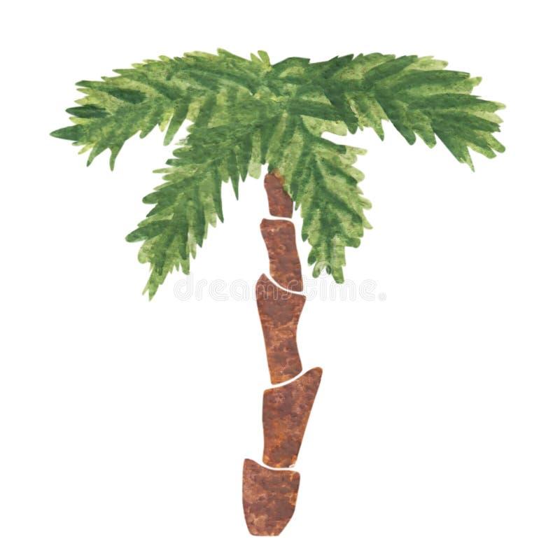 水彩在白色背景隔绝的棕榈树手画 向量例证