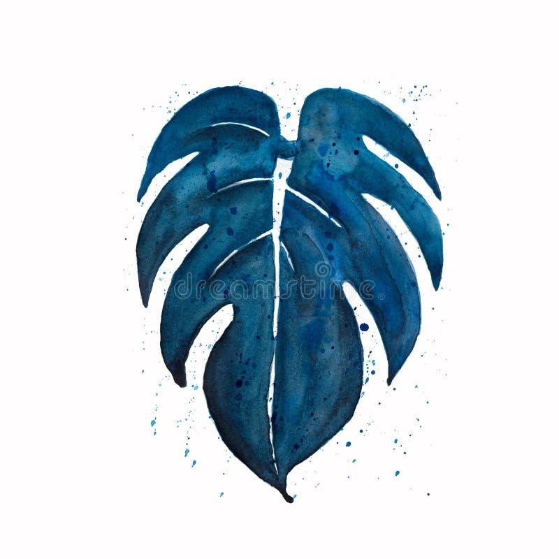 水彩在蓝色的monstera叶子与在白色背景飞溅隔绝 热带 水彩手画例证 皇族释放例证
