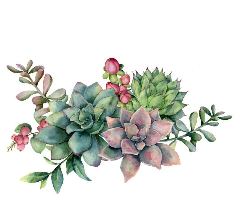 水彩多汁花束用红色莓果 手画绿色和紫罗兰色花、被隔绝的分支和金丝桃属植物  向量例证