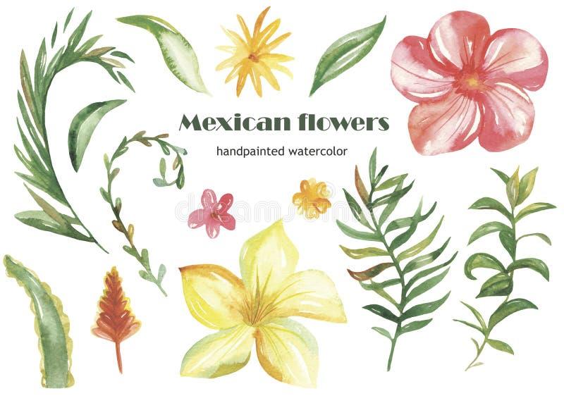 水彩套热带花、叶子和植物 皇族释放例证