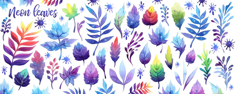水彩幻想霓虹天空星系月亮叶子集合 在白色背景的波斯菊紫罗兰紫色桃红色蓝色叶子 免版税库存照片