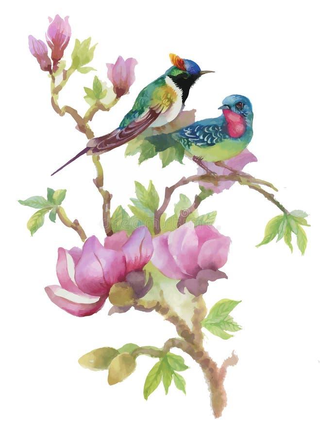 水彩手拉的五颜六色的美丽的花和鸟 皇族释放例证