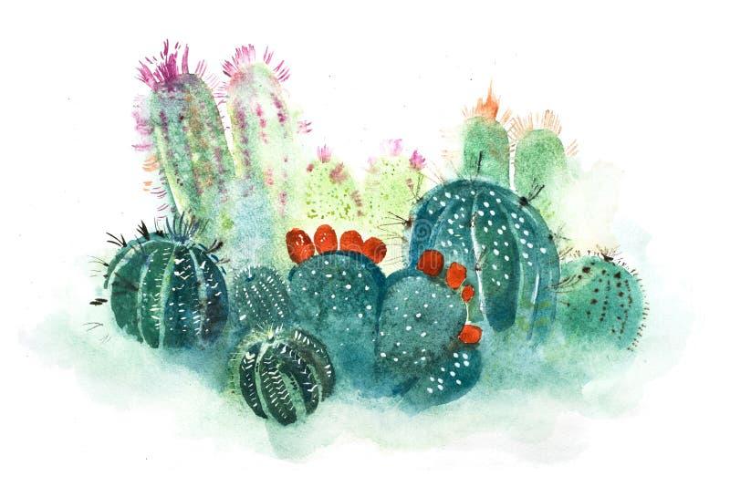 水彩手拉的尖刻的仙人掌绽放花 向量例证