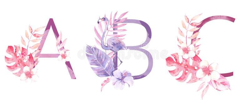 水彩手拉的热带信件组合图案或商标 大写A,B,C,与密林草本装饰 棕榈和 免版税库存图片