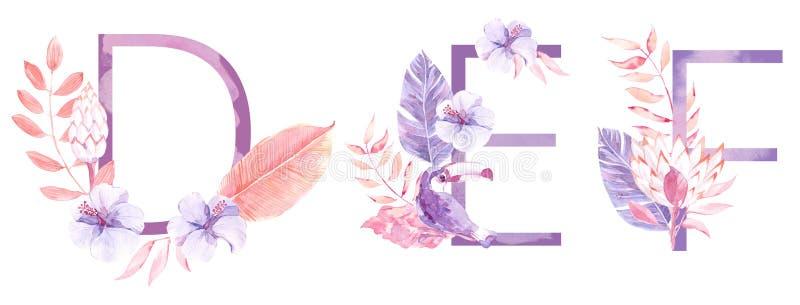水彩手拉的热带信件组合图案或商标 大写D,E,与密林草本装饰的F 棕榈和 免版税库存照片