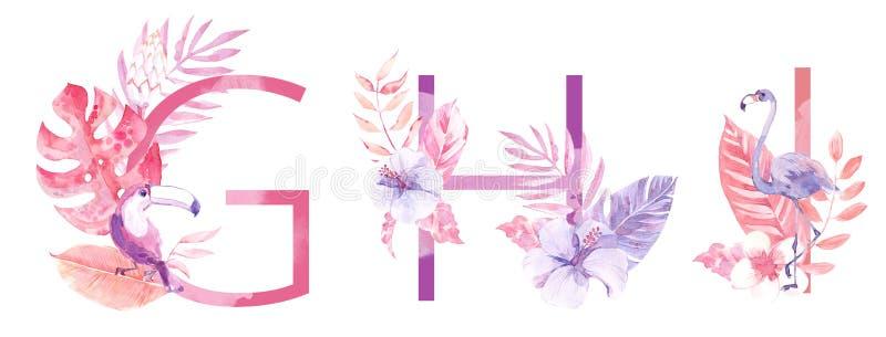 水彩手拉的热带信件组合图案或商标 大写G,H,I,与密林草本装饰 棕榈和 库存图片