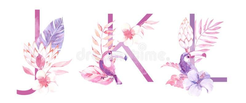 水彩手拉的热带信件组合图案或商标 大写J,K,与密林草本装饰的L 棕榈和 库存图片