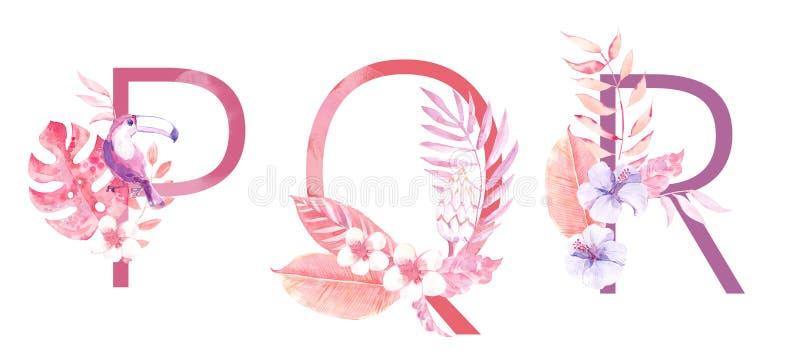 水彩手拉的热带信件组合图案或商标 大写P,Q,与密林草本装饰的R 棕榈和 库存照片