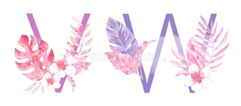 水彩手拉的热带信件组合图案或商标 大写V,与密林草本装饰的W 棕榈和monstera 免版税库存图片