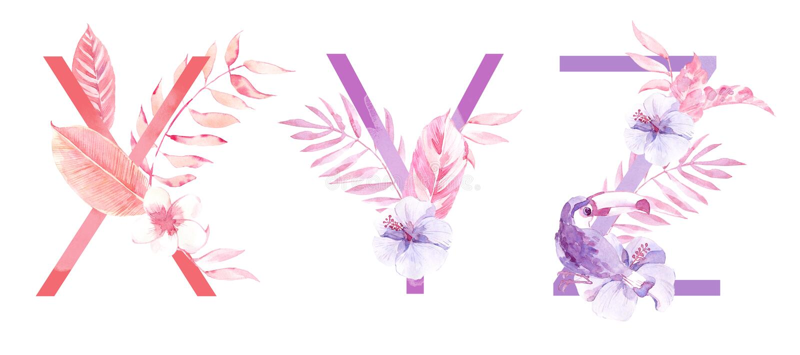 水彩手拉的热带信件组合图案或商标 大写X,Y,与密林草本装饰的Z 棕榈和 免版税库存照片
