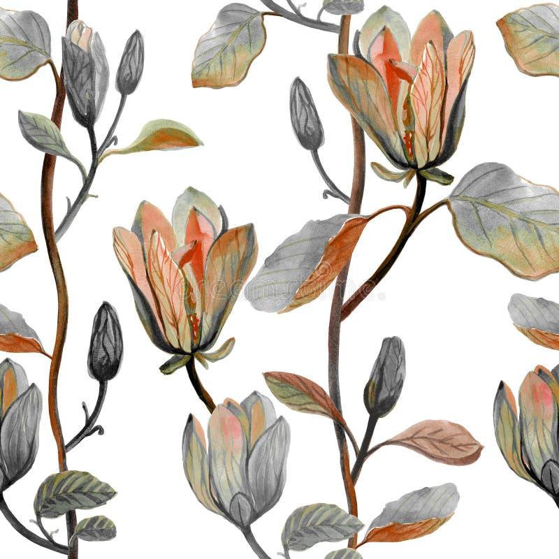 水彩手拉的美丽的木兰花 皇族释放例证