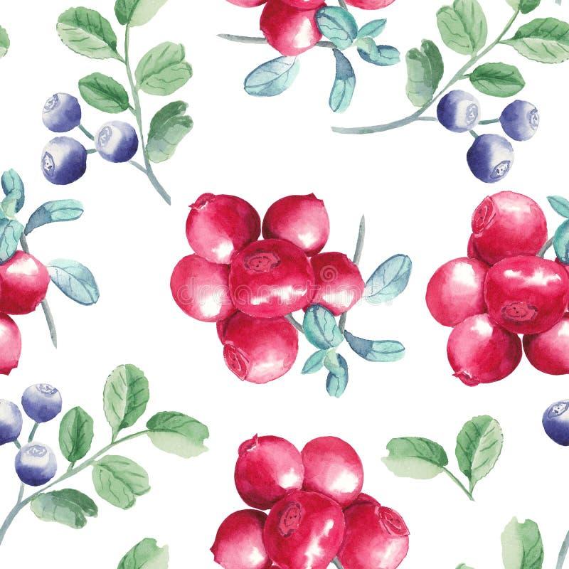 水彩手拉的莓果无缝的样式 皇族释放例证