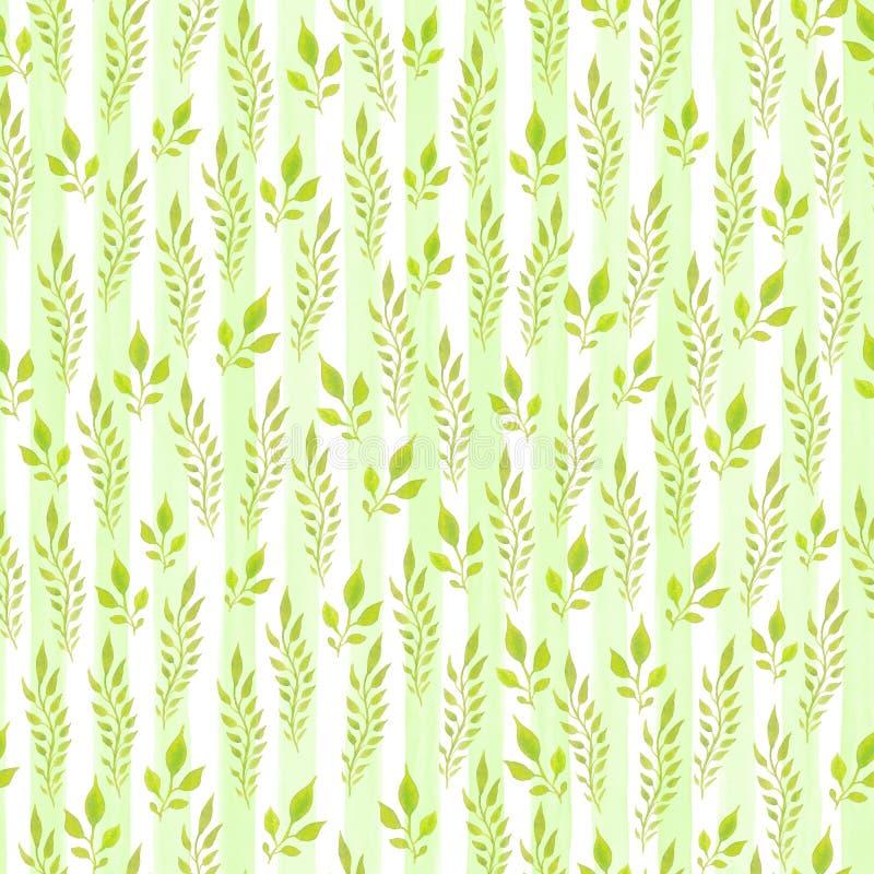 水彩手画无缝的样式 背景绿色留下白色 包装纸的,纺织品,时髦墙纸,w用途 库存例证