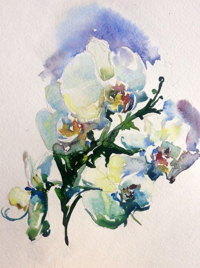 水彩抽象背景花卉兰花开花春天精美秀丽装饰手美丽的墙纸 库存例证