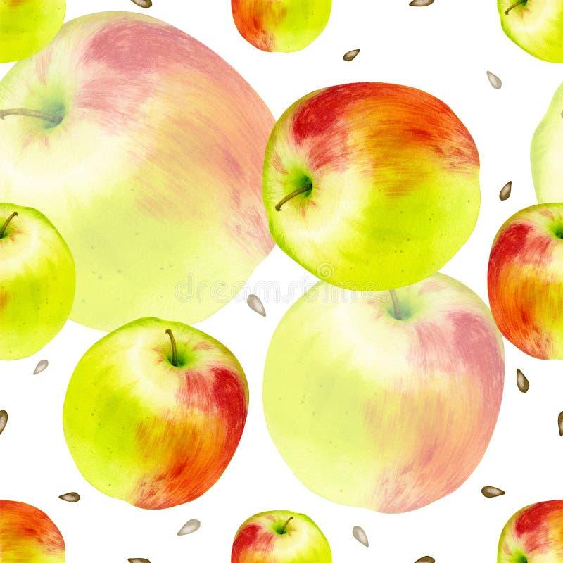 水彩无缝的样式用苹果 手拉的植物的设计 横幅的模板,海报,笔记本,邀请 皇族释放例证