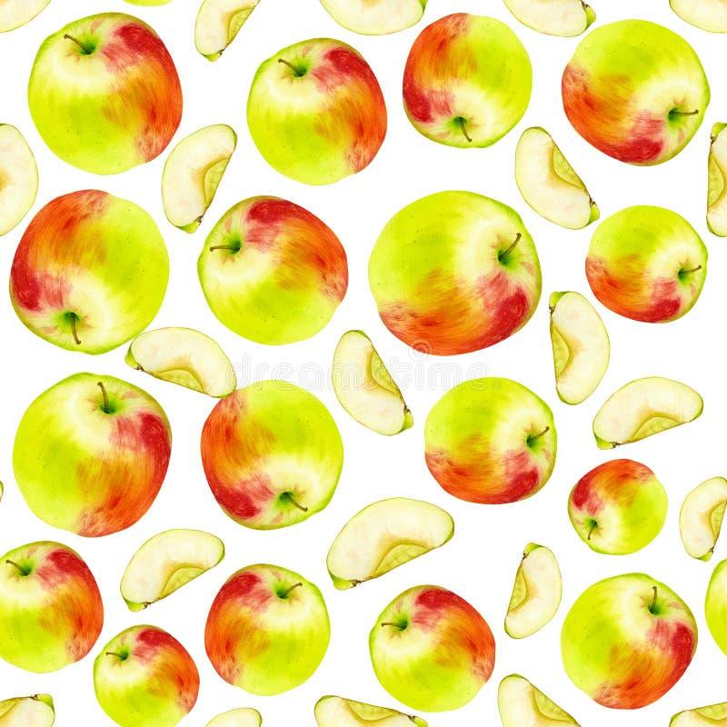 水彩无缝的样式用苹果 手拉的植物的设计 横幅的模板,海报,笔记本,邀请 向量例证