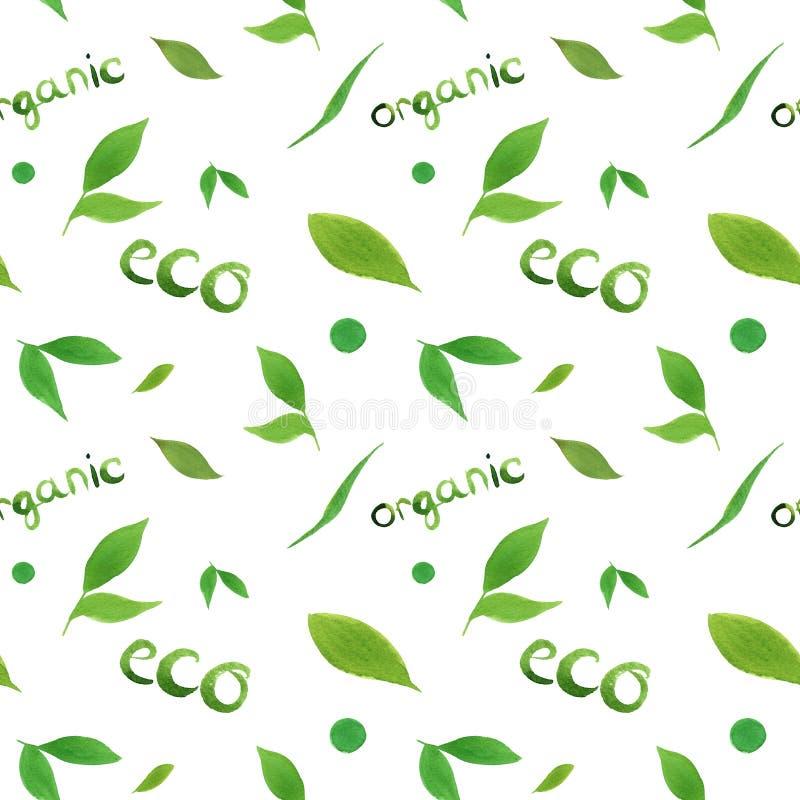 水彩无缝的样式简单的绿色叶子eco,有机概念,在上写字在白色背景 皇族释放例证