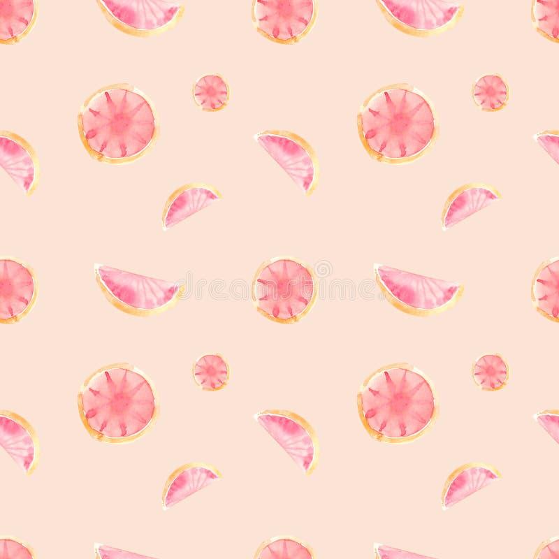 水彩无缝的样式葡萄柚 向量例证