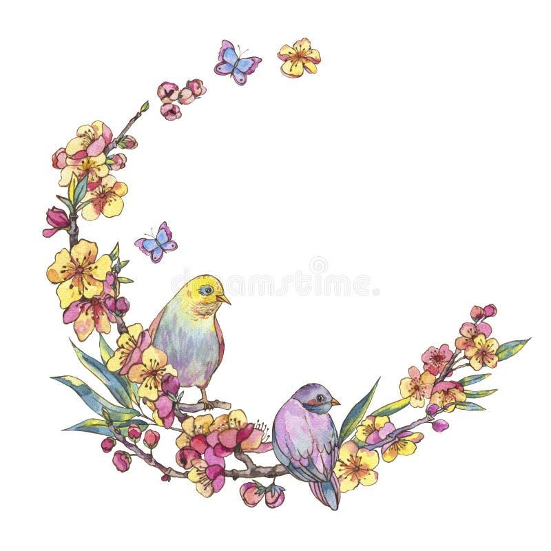 水彩春天圆的框架,与鸟的葡萄酒花卉花圈 向量例证