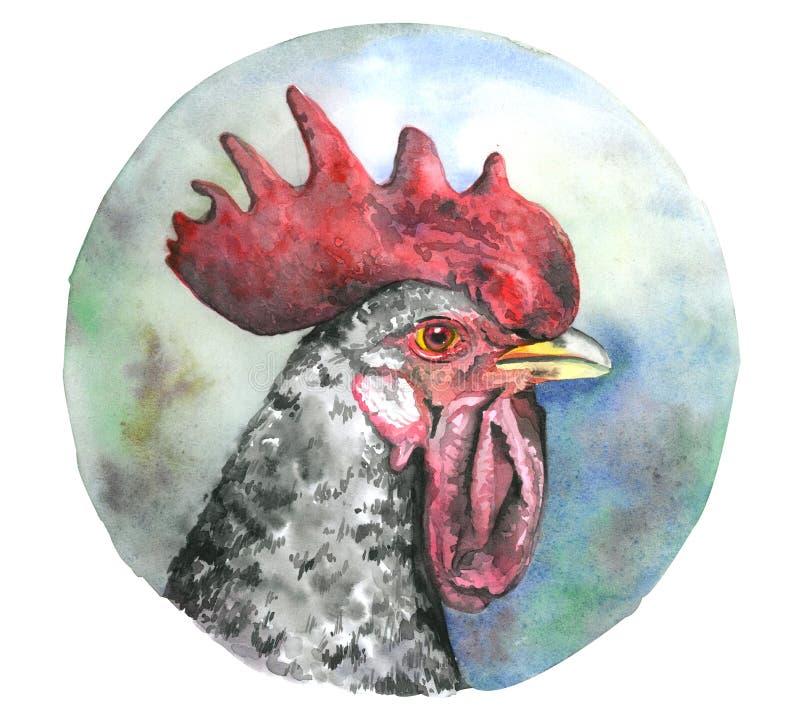 水彩有红色梳子的公鸡头 向量例证