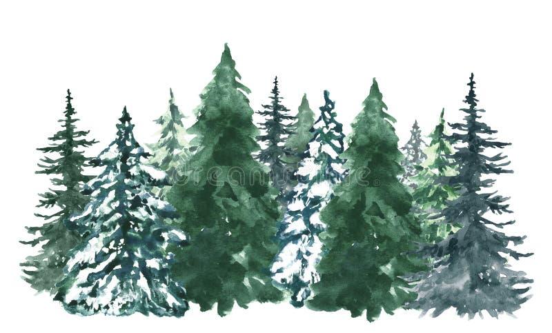 水彩松树背景 与手画常青森林的横幅,被隔绝 雪冬天妙境例证 免版税库存照片