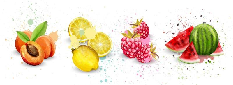 水彩果子被设置的传染媒介 杏子,柠檬,莓,西瓜可口例证 库存例证