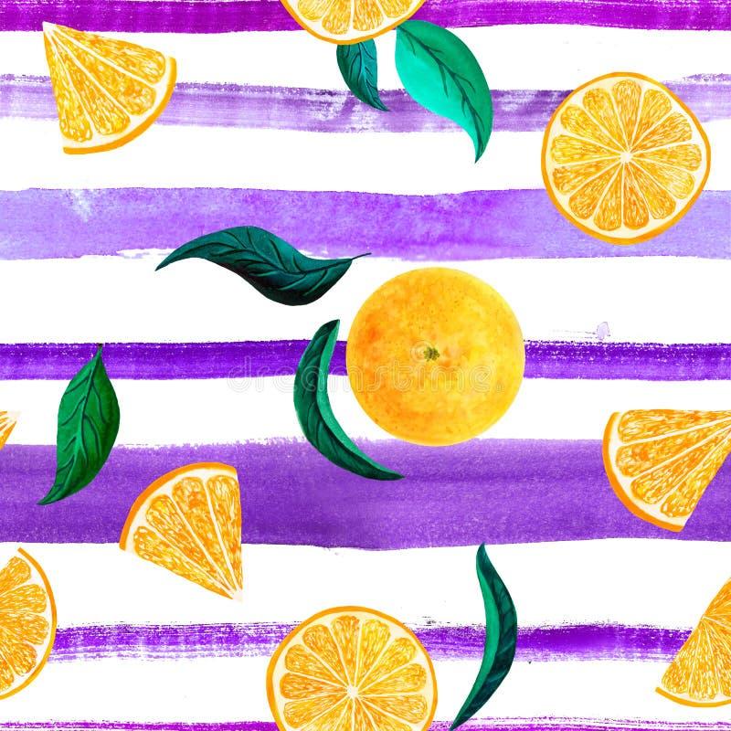 水彩柑橘样式桔子,与分支,在白色背景的植物的自然例证的无缝的样式 库存例证