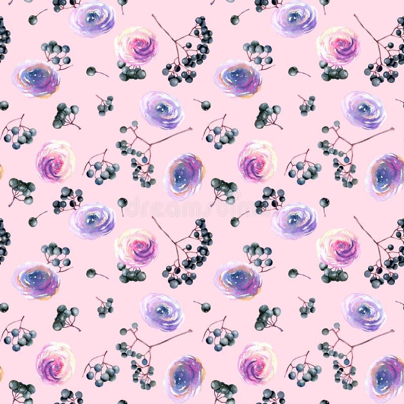 水彩桃红色、紫色玫瑰和接骨木浆果分支无缝的样式 库存例证