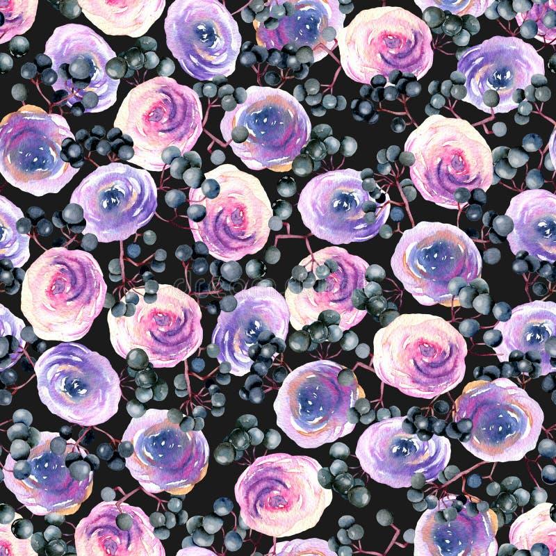 水彩桃红色、紫色玫瑰和接骨木浆果分支无缝的样式 向量例证