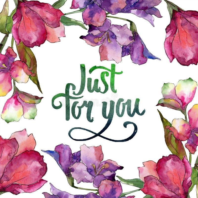 水彩桃红色和紫色德国锥脚形酒杯花 花卉植物的花 框架边界装饰品正方形 向量例证