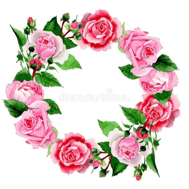 水彩桃红色罗斯花 花卉植物的花 框架边界装饰品正方形 皇族释放例证