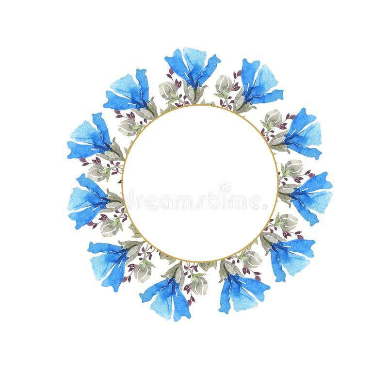 水彩植物的圆的框架 狂放的春天花 多彩多姿的明亮的花束 皇族释放例证