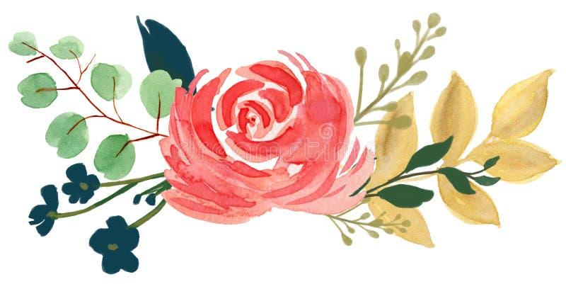 水彩植物群漂泊葡萄酒玫瑰色牡丹摘要花arr 库存例证