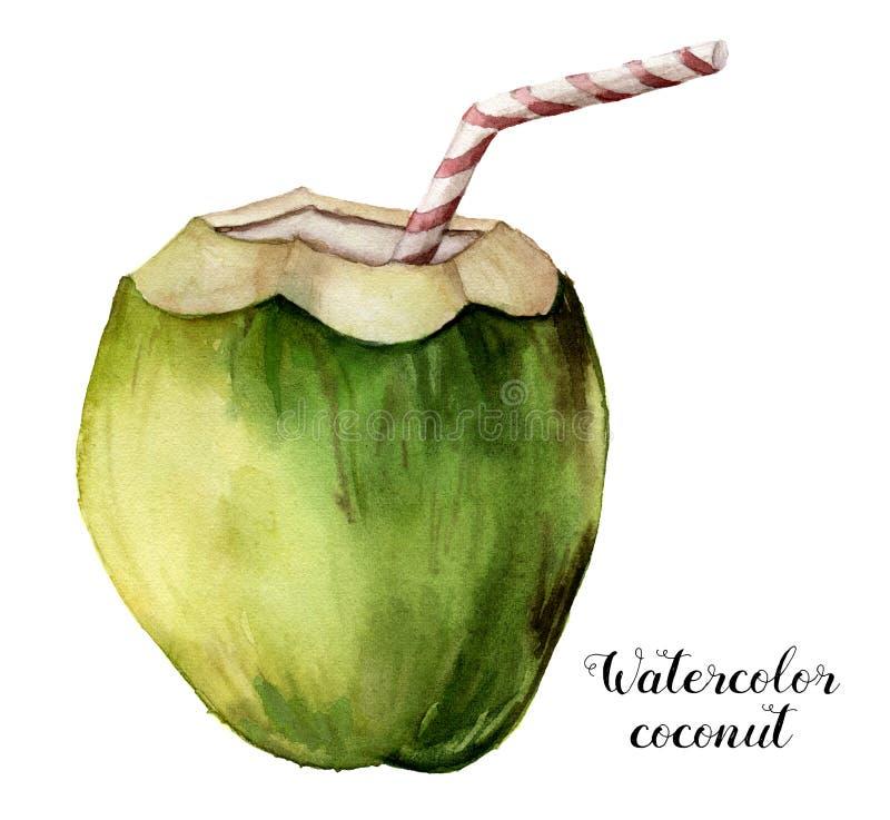 水彩椰子 与在白色背景隔绝的镶边管的手画异乎寻常的饮料 与a的热带鸡尾酒 向量例证