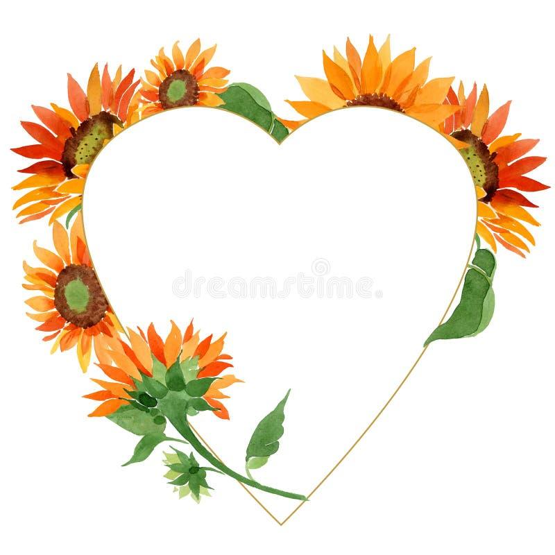 水彩橙色向日葵花 花卉植物的花 框架边界装饰品正方形 皇族释放例证